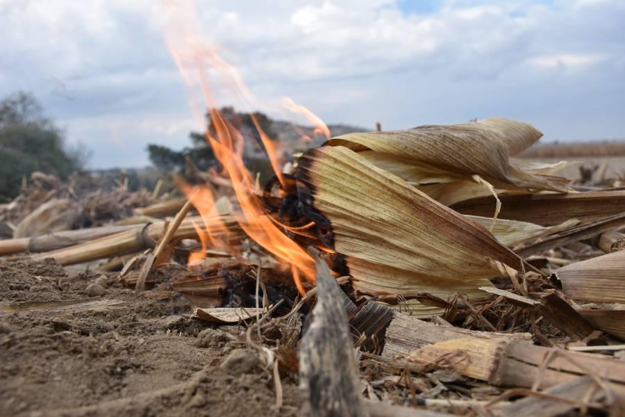 Agricultura activa estrategia para reducir quemas agropecuarias