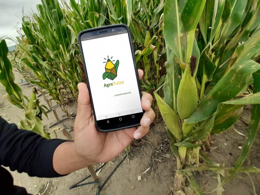 Reconocen a México por sustentabilidad en producción de maíz a nivel mundial