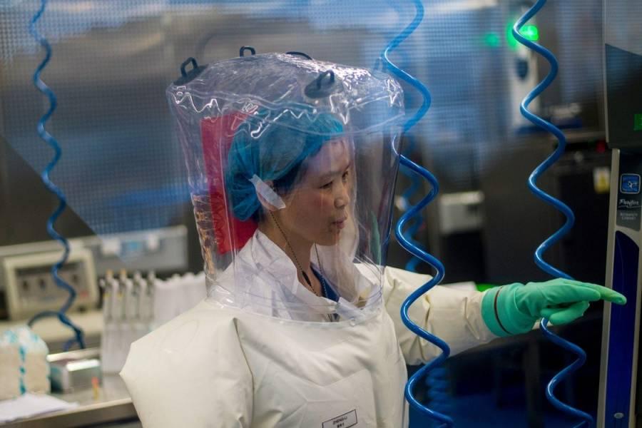 Viróloga china advierte 12 nuevos virus: Covid-19 sólo es la punta del iceberg
