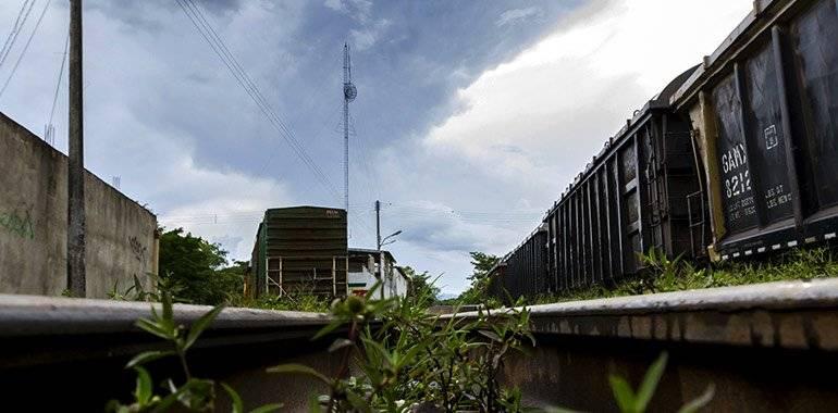 Tribunal federal resolvió que el Tren Maya podrá reanudar con trabajos