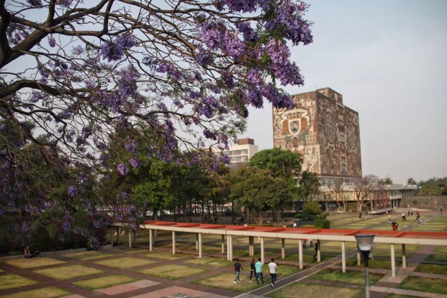 UNAM registra primera titulacion de doctorado a distancia