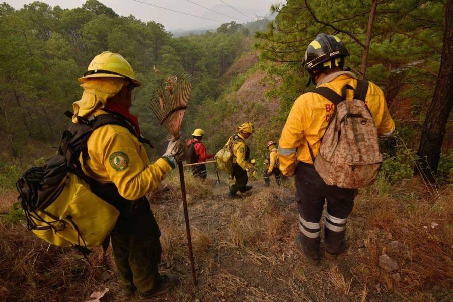 Disminuye el 40% de incendios en el país en lo que va de 2020