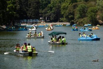 Bosques de Chapultepec, Tlalpan y Aragón reabrirán al 30%