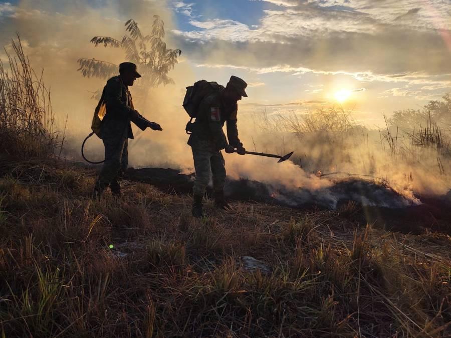 Más de dos mil hectáreas en 11 estados consumidas por el fuego