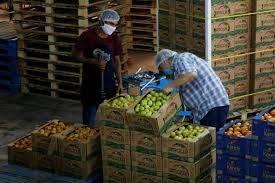 IMSS registra 18 mil empresas para reiniciar actividades