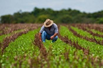 Sector agroalimentario adopta medidas internacionales de prevención por Covid-19