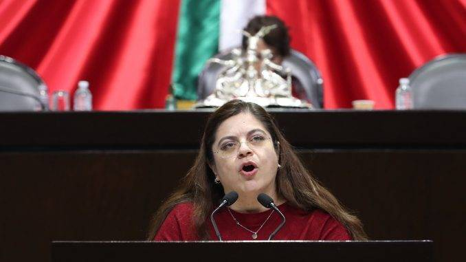 Inaceptable desconocer destino de donaciones: diputada Hortensia Noroña Quezada, GPPRI