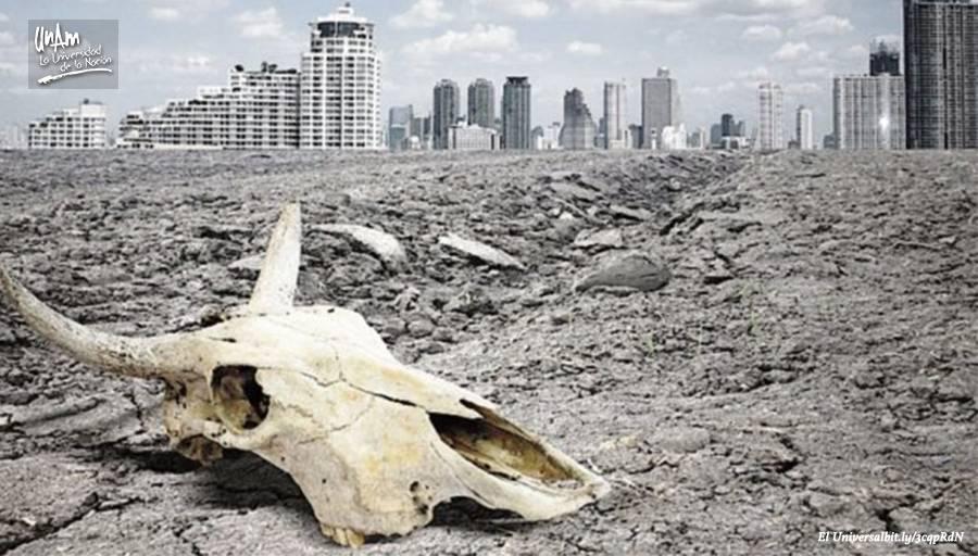 Sexta extinción masiva pone en riesgo a 515 especies del planeta