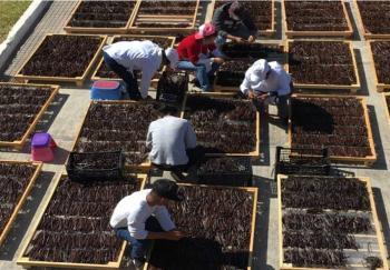 Agricultura fortalece acciones para asegurar producción y abasto de alimentos ante Covid-19