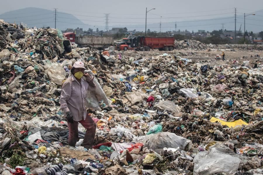 Pide el Partido Verde no relajar cuidado al medio ambiente ante pandemia