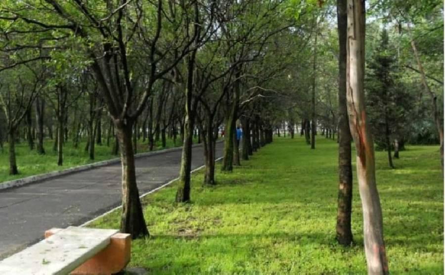 PVEM busca evitar que parque sea prepa