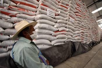 Reporta Agricultura avance del 75.29 % en abasto de fertilizante en Guerrero