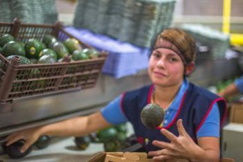 Superávit de balanza comercial agroalimentaria registra repunte en primer cuatrimestre