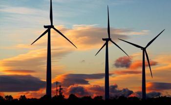 Cofece interpone controversia constitucional vs política que limita renovables