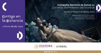 """Sábado de ballet: """"La bella durmiente del bosque"""""""