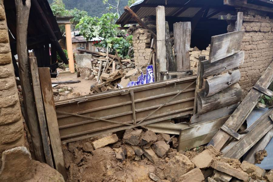 Tras sismo, NASA revela desplazamiento de terreno en Oaxaca