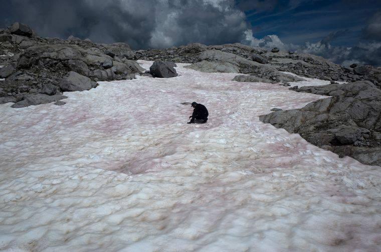 Los Alpes se visten de nieve rosa, lo que causa preocupación