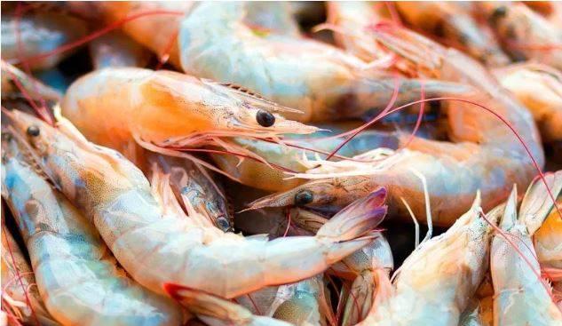 China detecta Covid-19 en camarones; suspende importación