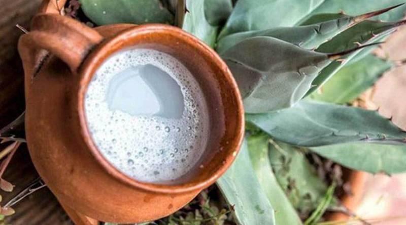 Validan científicos de la UNAM método artesanal para medir alcohol en mezcal