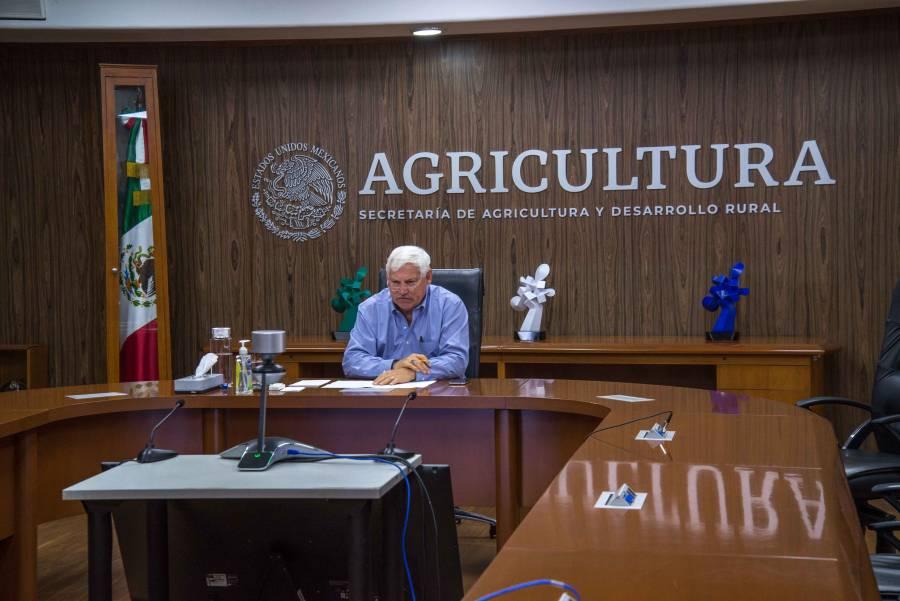 Agricultura y sector hortícola desarrollan medidas para mejorar condiciones laborales