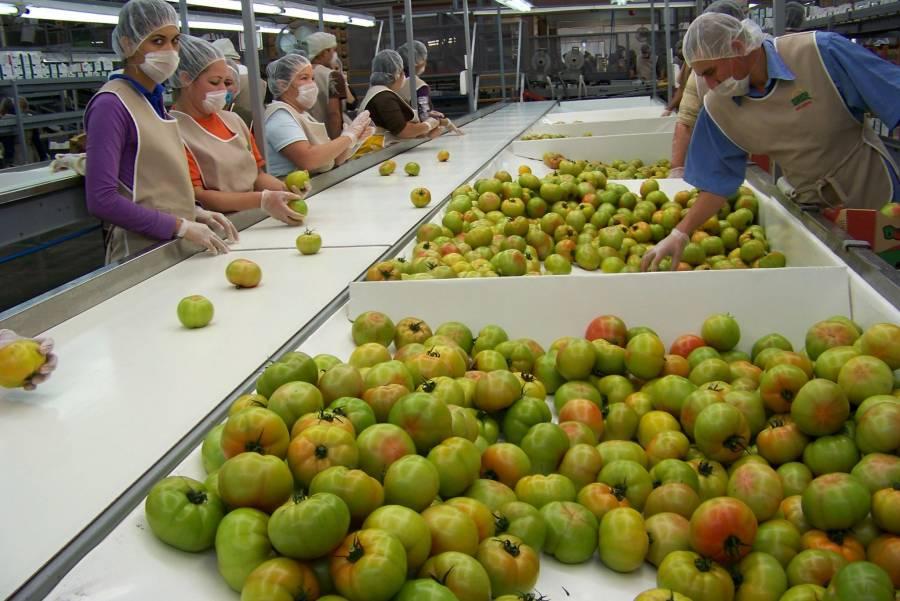 México registra positiva balanza comercial agroalimentaria