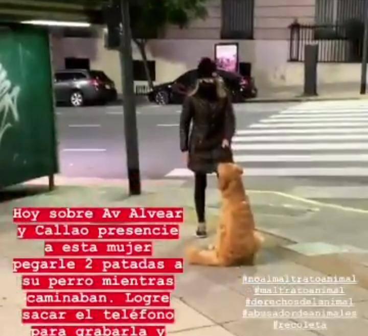Una mujer golpeó a un perrito brutalmente