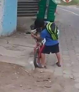 Niño pone cubrebocas a su perro para ir a la tienda