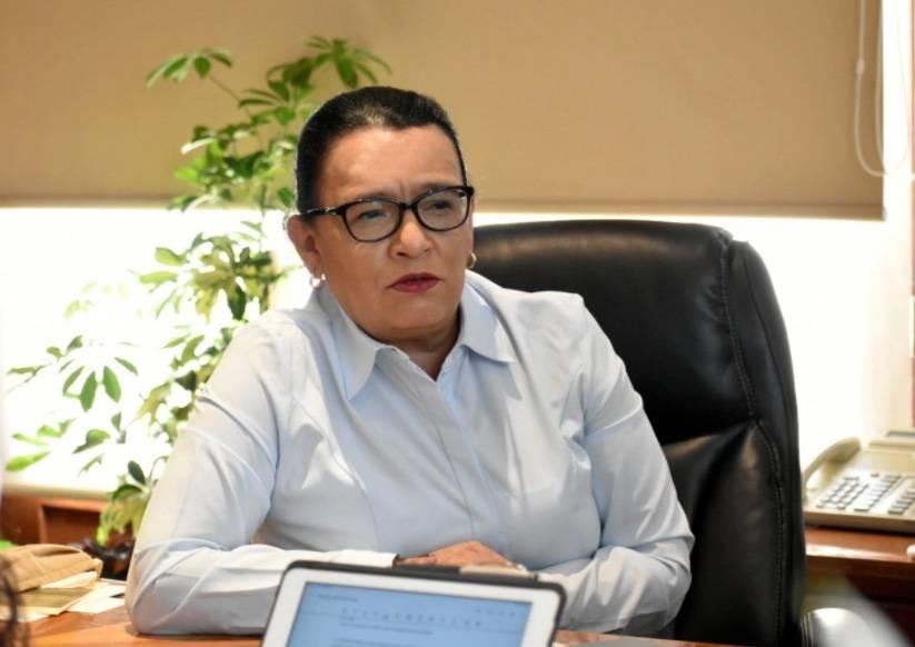 Perfil de Rosa Icela Rodríguez