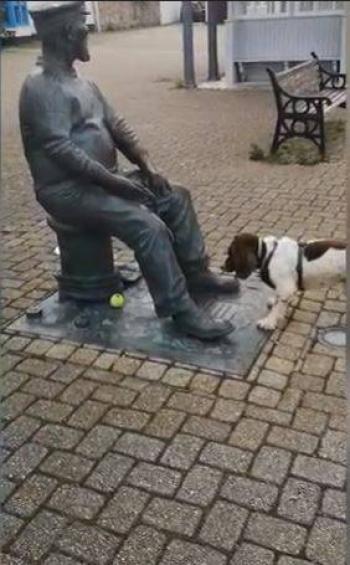 Perrito intenta jugar a la pelota con una estatua