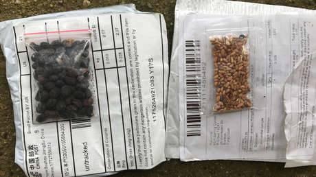 Semillas provenientes de China fueron identificadas por gobierno estadounidense