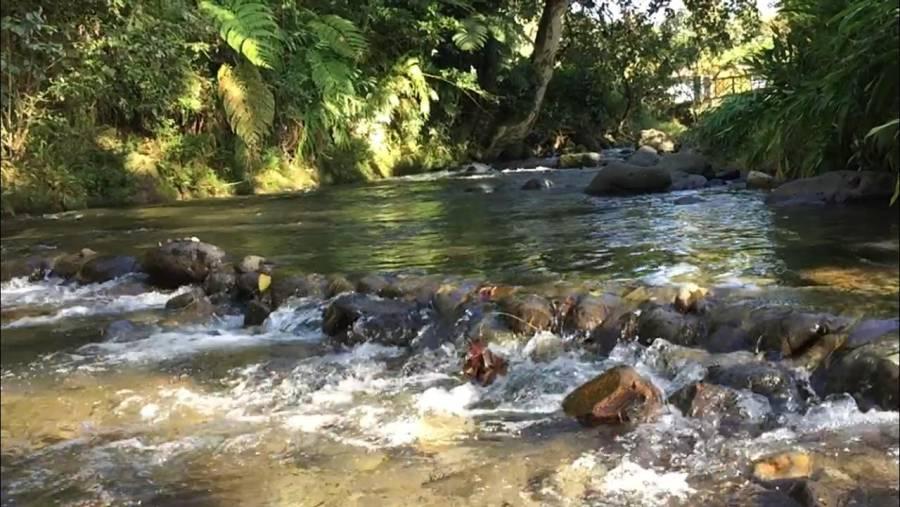 Localizan cuerpo de menor arrastrada por río en Coatepec, Veracruz