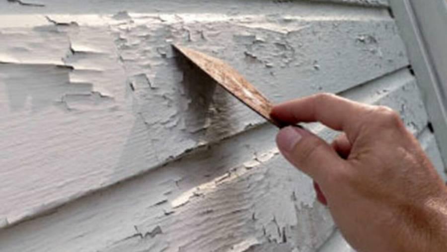 Impulsa Monreal iniciativa para limitar el nivel de plomo en pinturas
