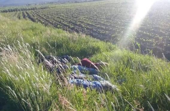 Encuentran a siete muertos en Jerécuaro, Guanajuato