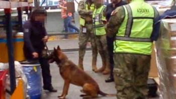 Autoridades decomisan 220 kilos de fentanilo en Aeropuerto de la CDMX