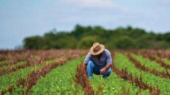 Fortalece Agricultura vinculación con productores de menor escala