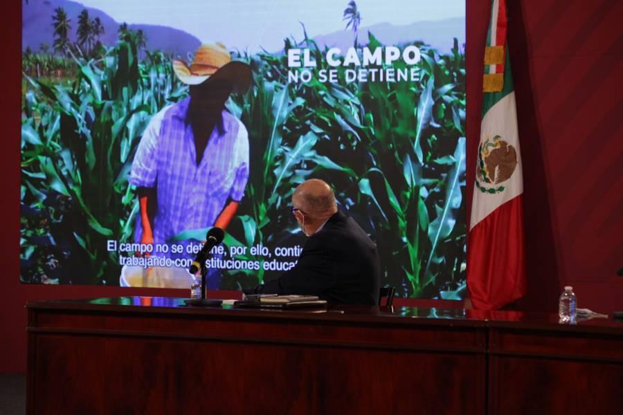 Agricultura promueve procesos productivos para la recuperación y conservación de suelos agrícolas