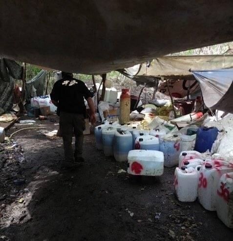 Decomisan más de 65 toneladas de sustancias para elaboración de drogas en Sinaloa