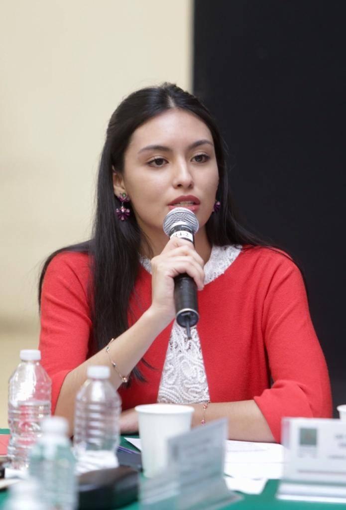 SFP debe investigar desvío de recursos del Insabi para compra de boletos de rifa de avión: Frida Esparza