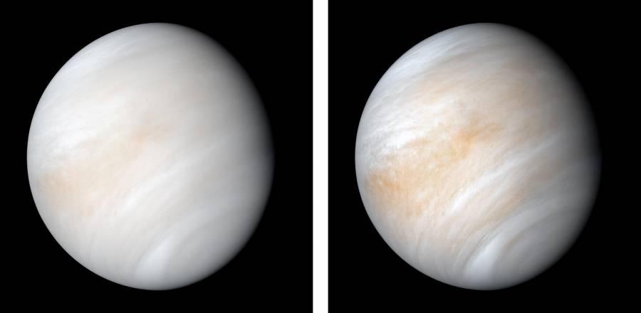 Hallan posibles indicios  de vida… en Venus