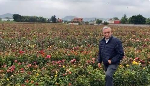 """""""Esto es México"""", dice AMLO al mostrar rosal en Atlixco"""