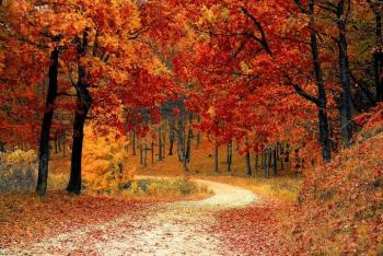 ¿Cuándo comienza el otoño y cuándo ocurre el cambio de horario?