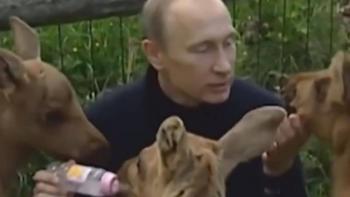Vladimir Putin alimenta a bebés de alce y se hace viral