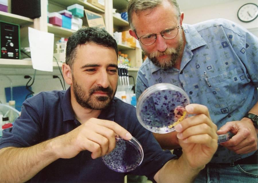Científicos que identificaron hepatitis C ganan Nobel de Medicina 2020