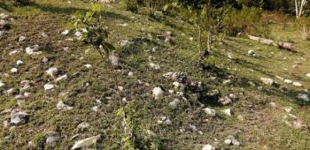 En construcción del tren maya en Campeche hallan más de 2 mil vestigios arqueológicos