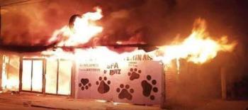 Fallecen 5 perritos calcinados, se incendió una veterinaria en Matamoros