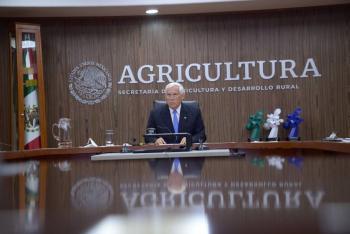 Presupuesto se está ejerciendo a cabalidad en la entrega de apoyos a productores: Villalobos Arámbula