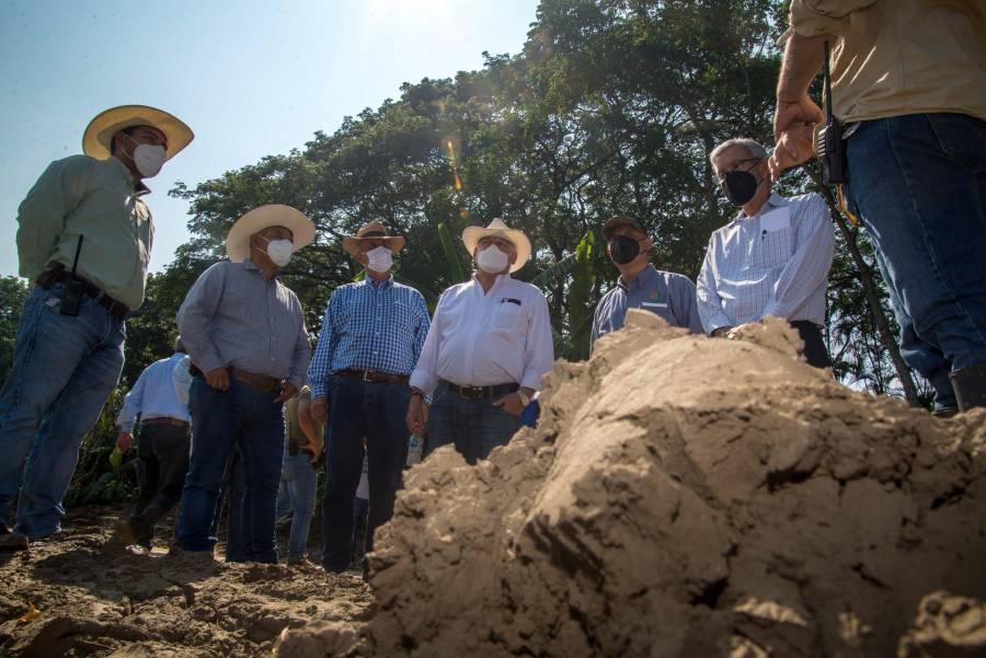 Recorren municipios de Tabasco para evaluar daño en cultivos agrícolas