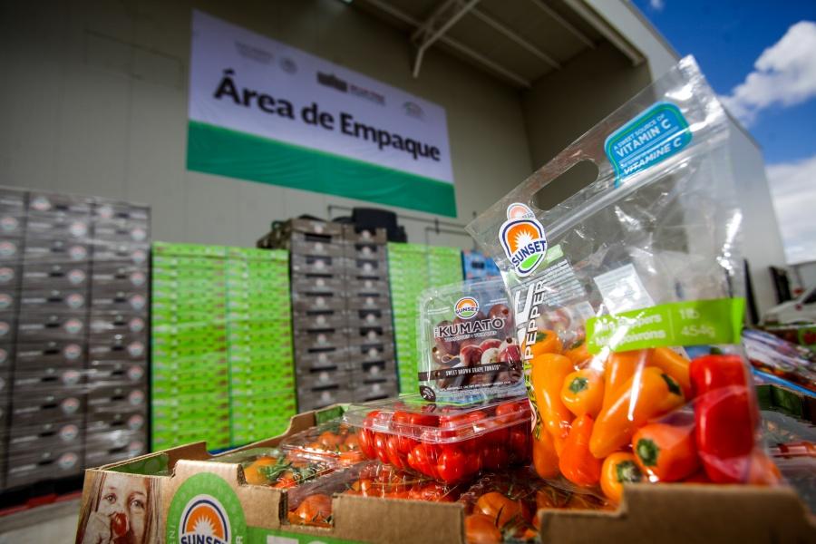 México reporta balanza agroalimentaria a favor
