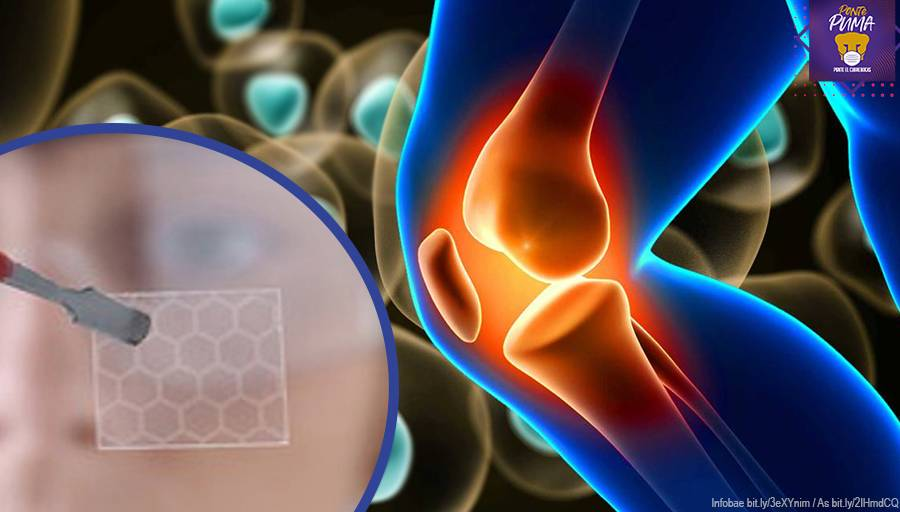 UNAM desarrolla andamios moleculares capaces de restaurar huesos y tejidos celulares