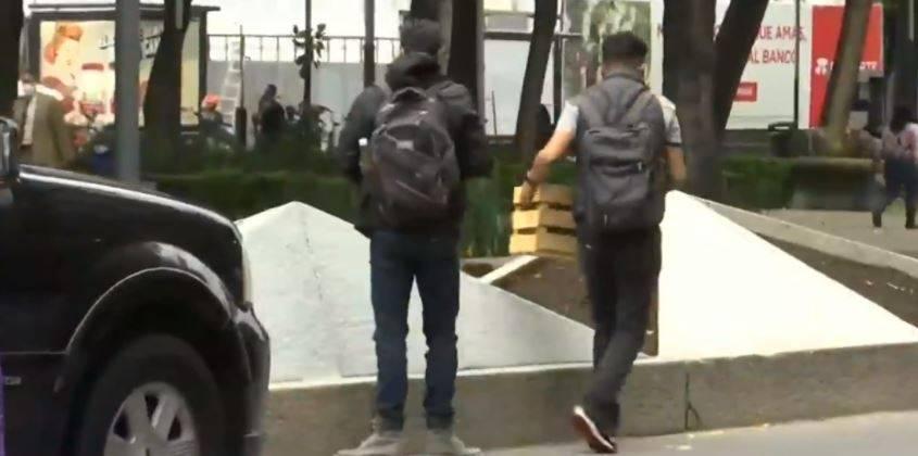 En pleno Paseo de la Reforma, siembran 100 plantas de marihuana
